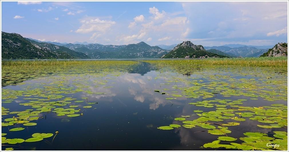 Jezioro Szkoderskie, skoder lake