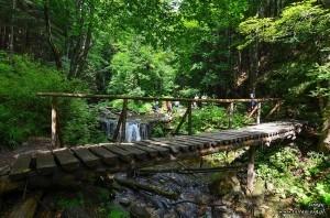 Żólty szlak w dolinie Białej Opavy