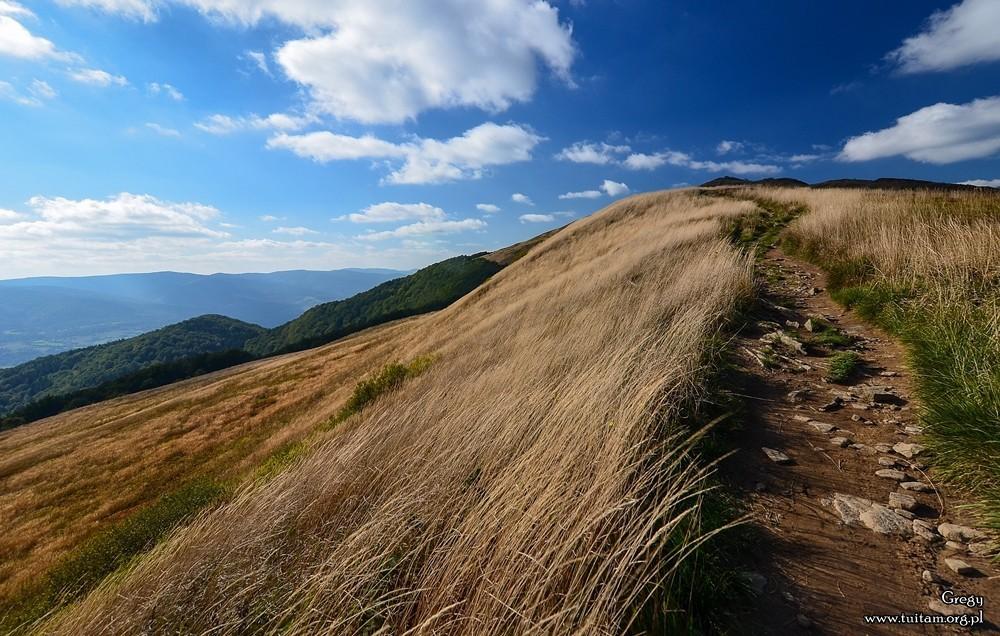 Szlak przez Połoninę Wetlińską na Smerek