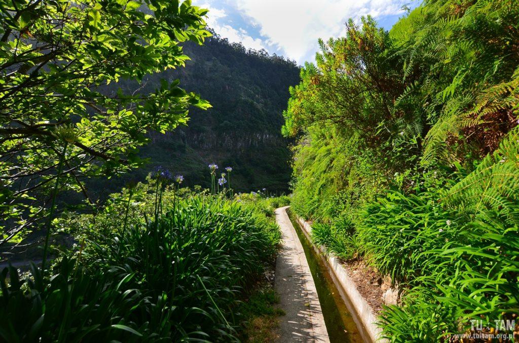 Madera, Madeira, lewada Nova, Levada Nova